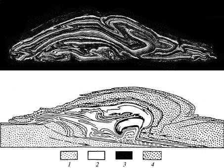 """Рис. 4. Альпы  """"пластилиновые """" (три фото вверху) и Альпы настоящие (схема геологического разреза) ."""