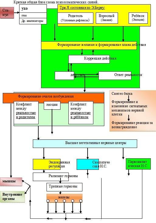 Краткая общая блок схема