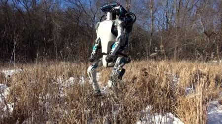 Фактор ишака и нищепанк. Почему роботы не заменят людей