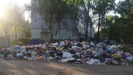 Мусорное противостояние: жители Брянска против депутата Пайкина
