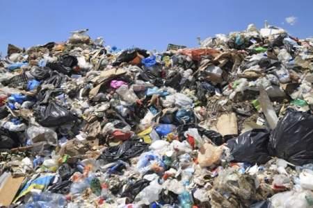 Новый «мусорный» оператор «отравляет» петербуржцев бездействием на свалке «Новоселки»