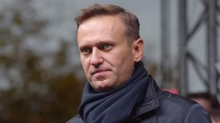Западная агентура, Милов и Яшин помогали Навальному организовывать московские беспорядки