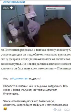 Пока Пчелинцев имитировал пытки, либшиза требовала отмены приговоров террористам
