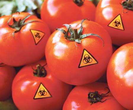 Турция заполоняет российский рынок токсичными помидорами