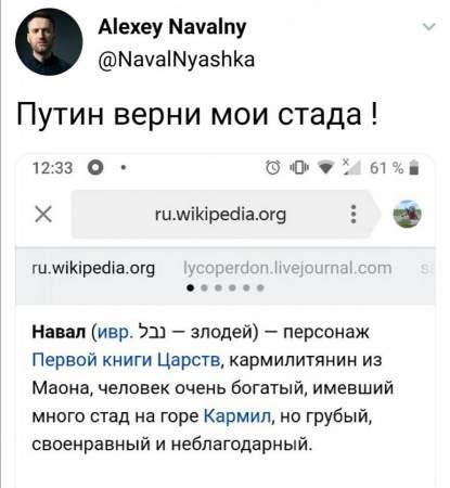 С миру по нитке: Навальный просит у хомяков 149 рублей