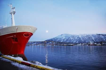 Норвегия нарушает собственные экологические принципы