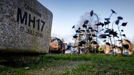 Почему «Боинг» MH17 падал 10 секунд? Американец нашёл загадочные факты в крушении над Донбассом