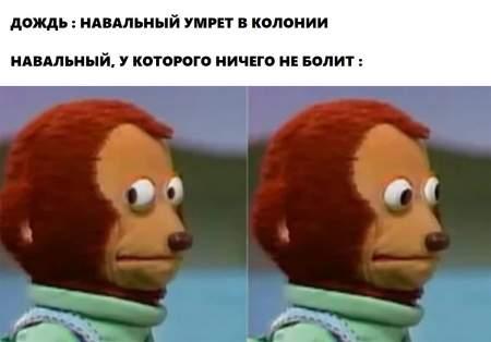 Навального похоронили на «Дожде»