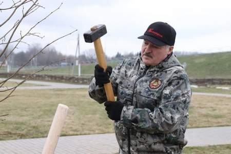 Я не я - провокация не моя: США отрицают причастность к покушению на Лукашенко